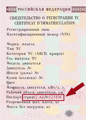 Обновить снилс по паспорту онлайн
